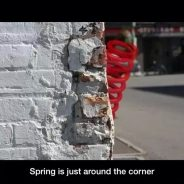 Spring is just round the corner
